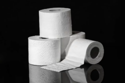 toilet-paper-3964492_960_720